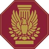 AIA Fellows Pin